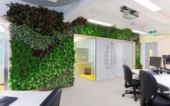 over 70 of workers value a sustainable office environment pss