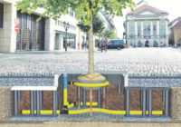 A Safe Haven for Urban Trees, with Wrekin TreeBunker™ System